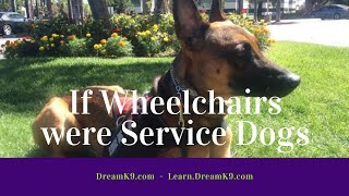 If SERVICE DOGS were WHEELCHAIRS - DreamK9.com