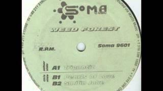 Weed Forest - Tripnotic (Acid 1996)