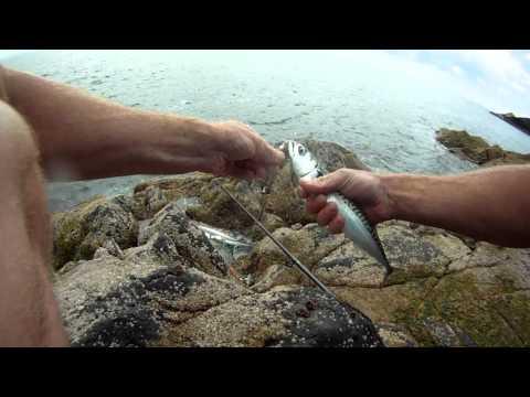 North Wales Fishing - Aberdaron