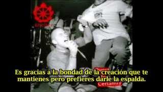 Shelter In Defense Of Reality (subtitulado español)