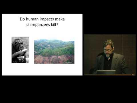 Understanding Warfare: An Evolutionary Approach