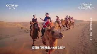 [跟着书本去旅行]骆驼客的故事  课本中国