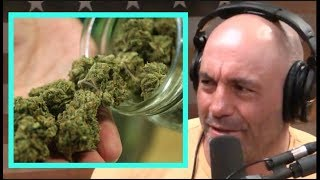 "Joe Rogan on California Weed Regulations ""It's Dumb!"""