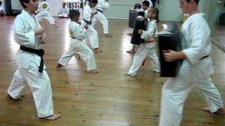 Torakan Tiny Tigers - Mae Geri (Front Kick)