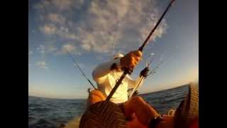Black Fin Tuna from Kayak !!!!!!