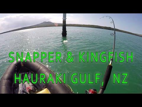 CATCHING SNAPPER & YELLOWTAIL KINGFISH IN THE HAURAKI GULF, NZ
