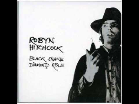 Robyn Hitchcock - The lizard