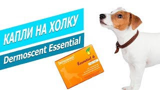 Капли на холку для собак Dermoscent Essential | Обзор Дермоссент Эссеншеал для собак