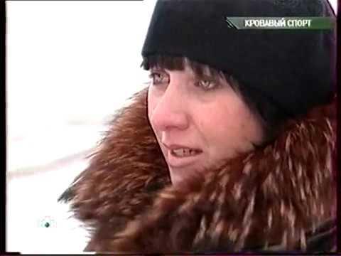 Очная ставка кровавый спорт налоговые ставки по транспортному налогу по ленинградской области юридических лиц