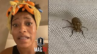 Keke Palmer Has To Call Hotel Staff To Remove Huge Bug From Her Room! 🦟