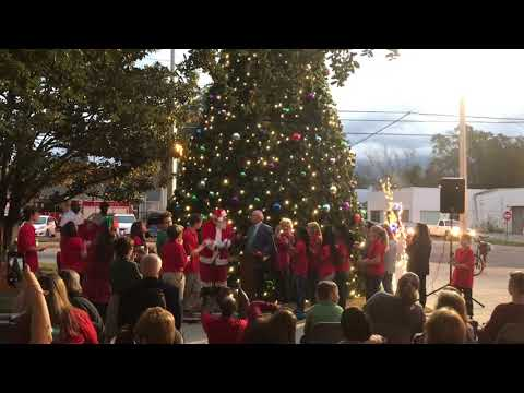 Valdosta City and Lowndes County light the annual Christmas trees.