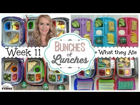 School Lunch Ideas for KIDS + What They Ate || BUNCHES of LUNCHES