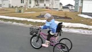 3 Wheel Bike Conversion-www.HigleyMetals.com