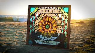 """This Wild Life - """"College Kids"""" (Full Album Stream)"""
