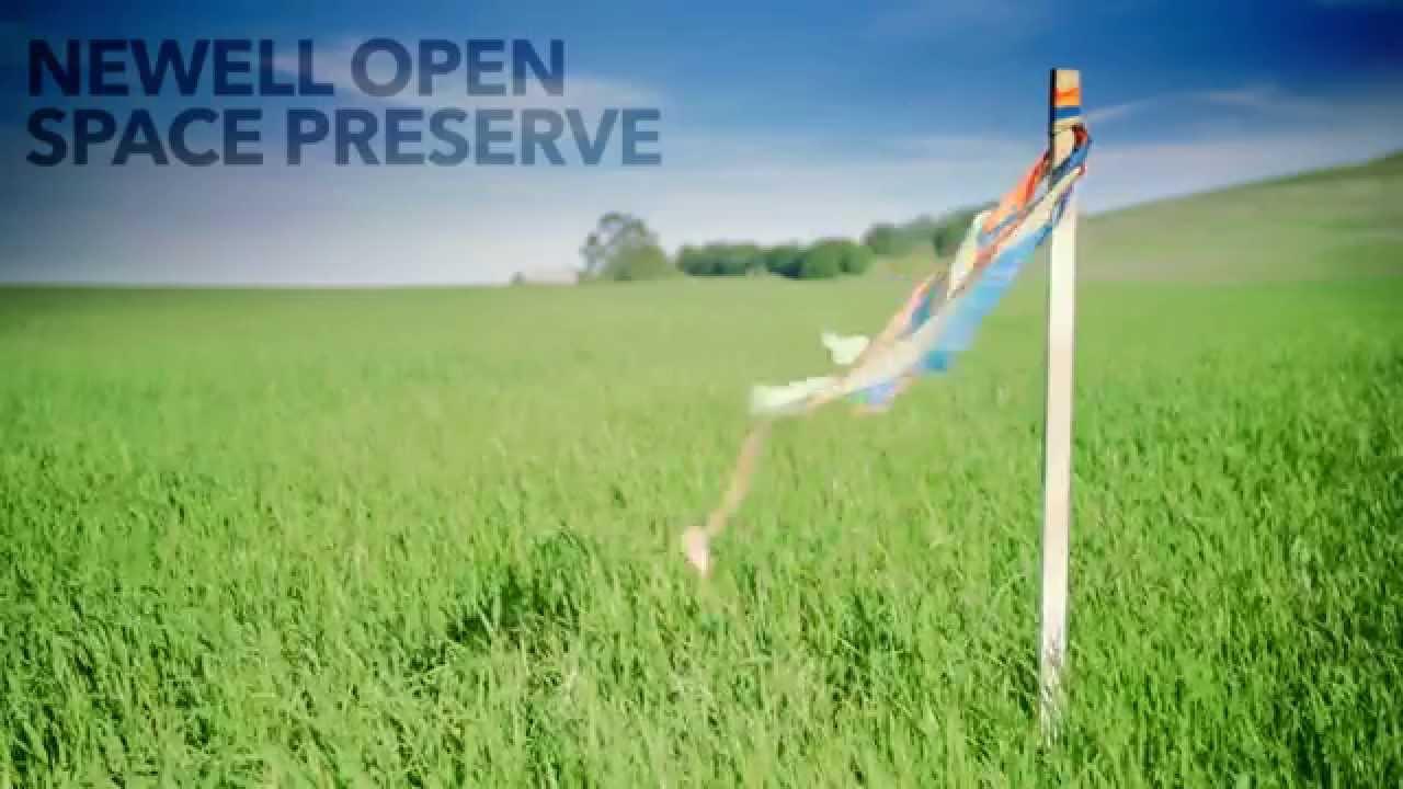 Should You Hire a Landscape Designer for Your Northern