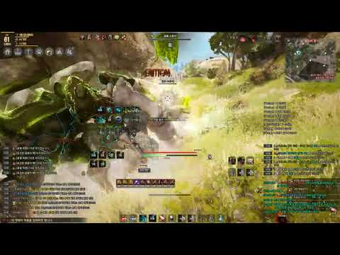 BlackDesert Ranger AP250 Wilderness Golem