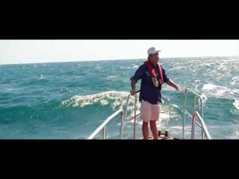 Howard – Marine Life Researcher – 45 sec English
