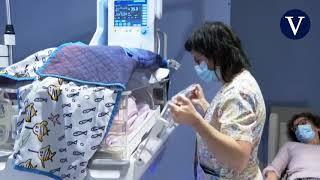 Crearán una placenta artificial para salvar la vida de los bebés prematuros