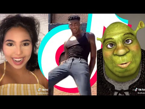 TIK TOK MEMES that made the spider on the wall laugh 😂🕷