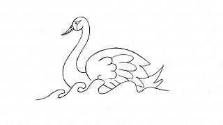 Як намалювати лебедя на воді: інструкція від EvriKak