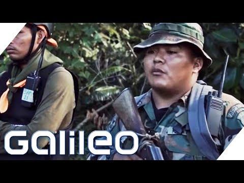 Kakao oder Knast: Perus Kampf gegen Drogen | Galileo | ProSieben