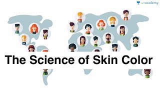The Science of Skin Color - Unacademy Bytes - Your Daily Dose of Knowledge in the Morning