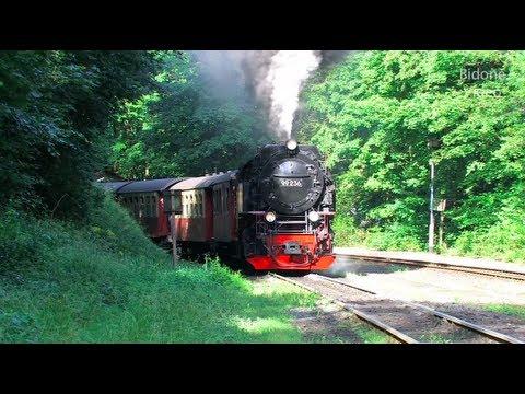 Dampfloks im Harz - HSB - Steam Trains - Züge