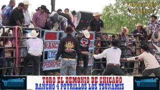 LOS TSUNAMIS EN CHICAGO CON LA BANDA CHILACACHAPA EN TOYOTA PARK 5=26=2014