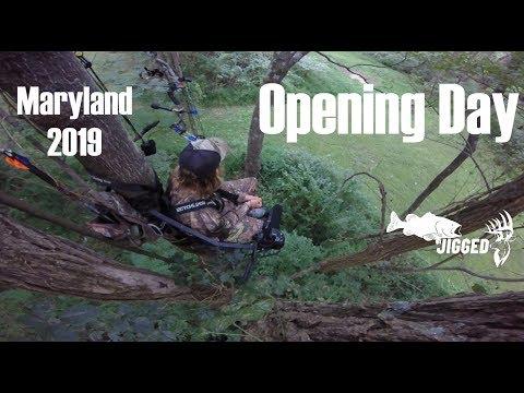 Maryland Deer Season Opening Weekend