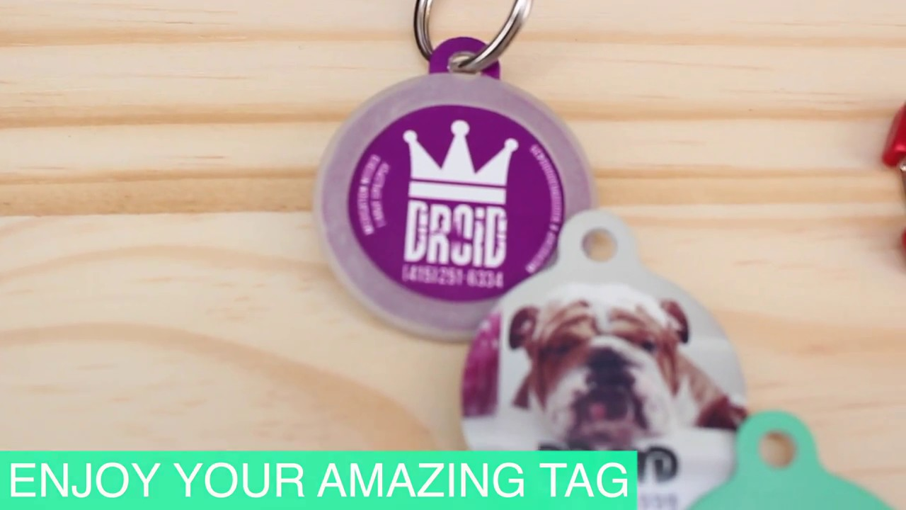 create your own dog id tag upet dog tag customizer youtube