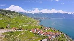 4K Lavaux, Lac Léman Vaud SWITZERLAND アルプス山脈