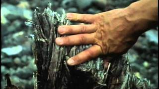 21 - Одиссея Жака Кусто -  Индонезия