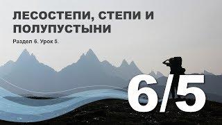 6/5 Лесостепи, степи и полупустыни