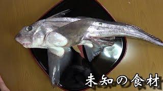 今にも空に羽ばたきそうな、不思議な魚が届きました。