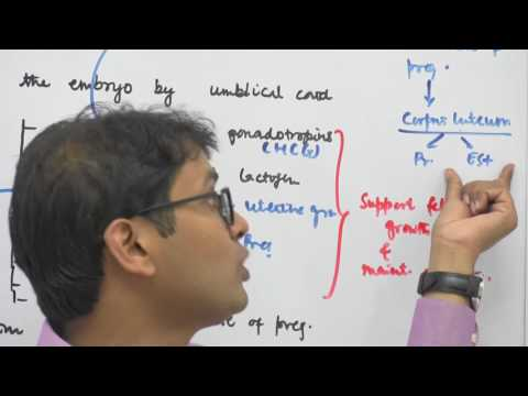Pregnancy & Embryonic Development - Human Reproduction - Dr. Rajeev Ranjan NEET & AIIMS Videos