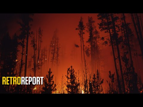 Wildfires: How Yellowstone 1988 Changed Forest Fire Fighting   Retro Report