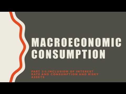 Macroeconomic Consumption 3/5: Inclusion of Interest Rate and Consumption of Risky Assets