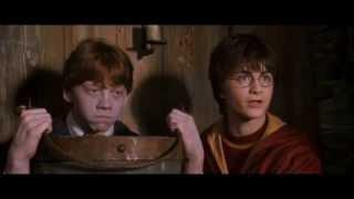 Harry Potter - Brumbál je úchyl (CZ Dabing)