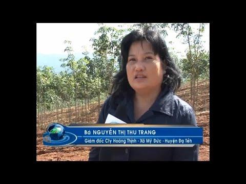 Công Ty TNHH SX-TM-XNK HOÀNG THỊNH - Đài Truyền Hình Lâm Đồng