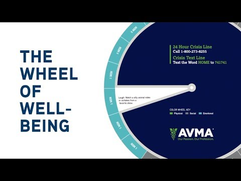 Wheel of Wellbeing: Wellbeing Tips for the Entire Veterinary Team