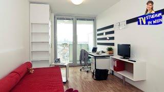 Общежития в Вене для студентов