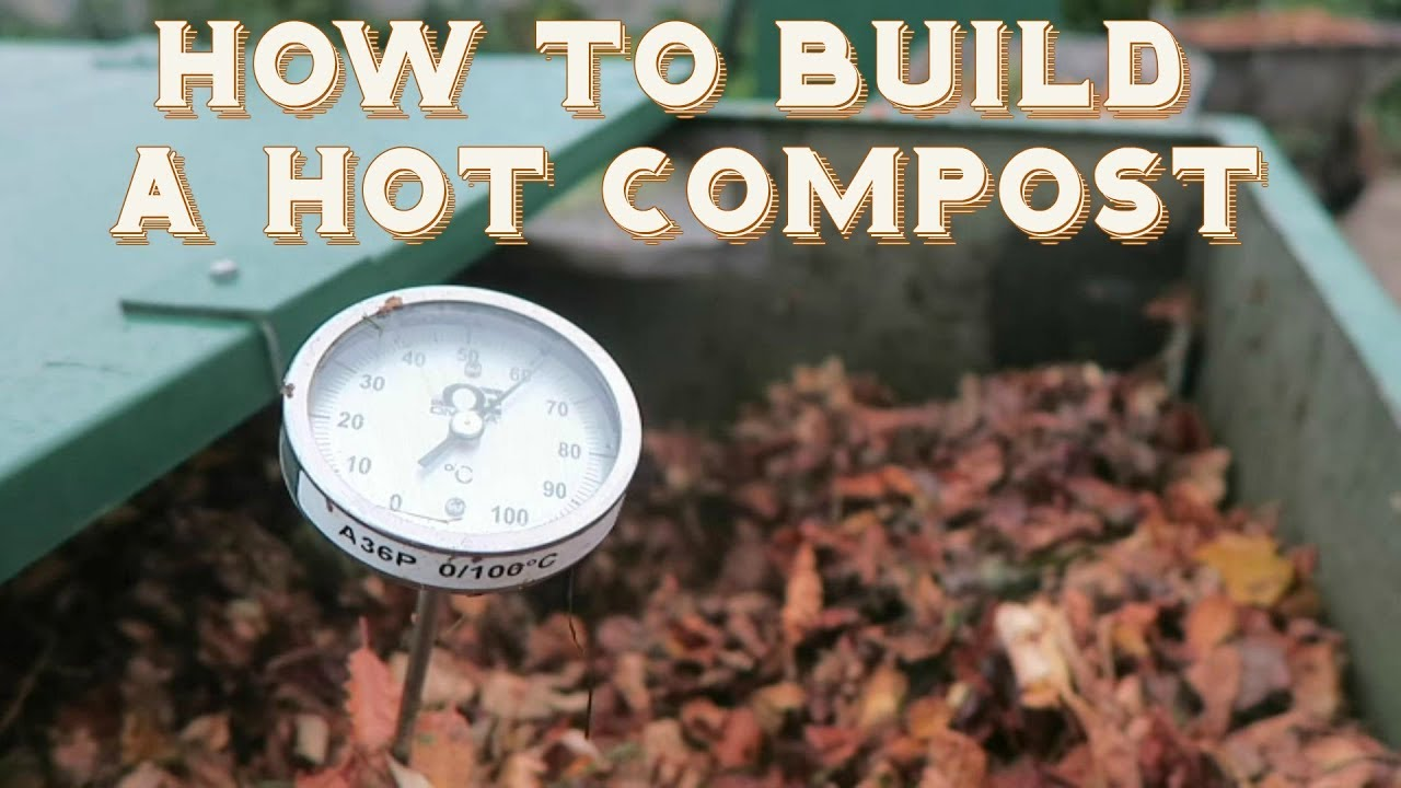 How to Start Your Hot Compost Bin