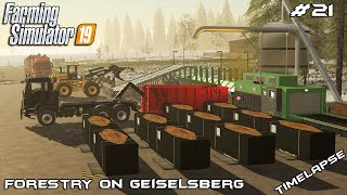 Building Sawmill & new equipment | Forestry on Geiselsberg | Farming Simulator 19 | Episode 21