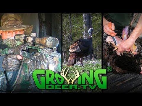 Turkey Hunting | Scout, Pattern, Big Toms Down (#440) @GrowingDeer.tv