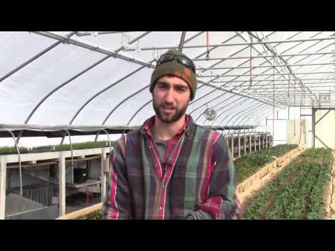 Meet Brendan Murtha '14 of the Dickinson College Farm