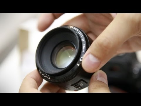 High Quality Canon EF 50mm F/1.8 Lens Review With Samples (Full Frame And APS C)    YouTube