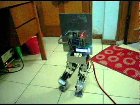 how to make a bipedal walking robot