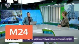 Смотреть видео Как долго в столице продлится аномальный мороз? - Москва 24 онлайн