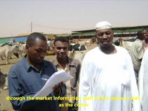 Sudan Food & Agriculture Market Information System