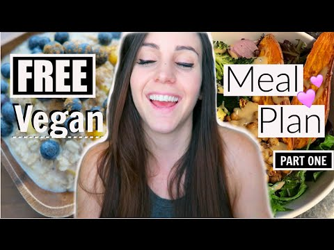 📓🍓Part One: VEGAN MEAL PLAN (Quick & Easy Plant-Based Meals)